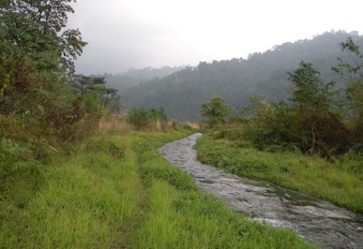 Jomotsangkha Wildlife Sanctuary 1